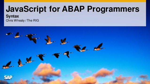 JavaScript for ABAP Programmers Syntax Chris Whealy / The RIG