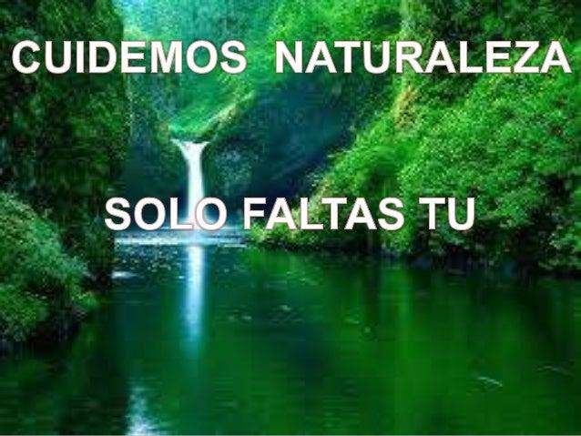 Lo mejor que la naturaleza ha dado al hombre es la brevedad de su vida.