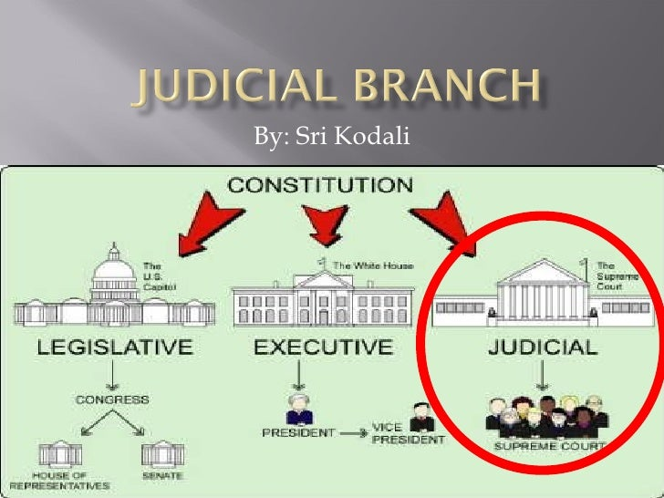 the judical branch Under the 1983 constitution of georgia, the judicial power of the state is vested in seven levels or classes of courts the georgia court system has two appellate-level courts: the supreme.