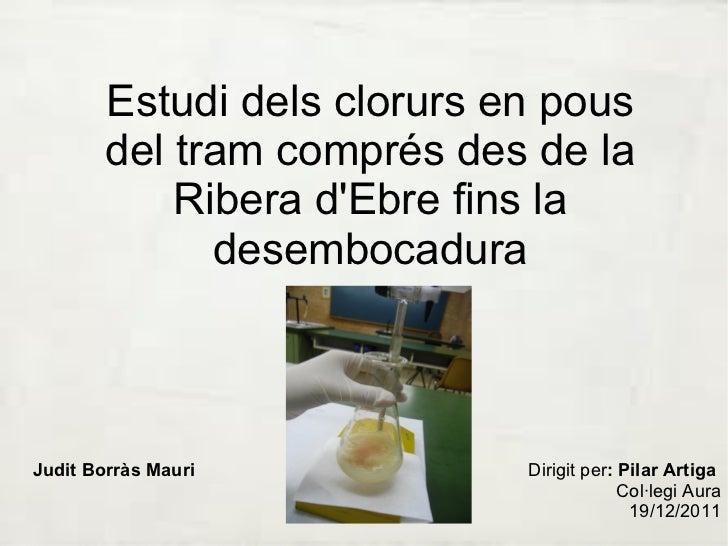 Estudi dels clorurs en pous del tram comprés des de la Ribera d'Ebre fins la desembocadura Judit Borràs Mauri Dirigit per ...