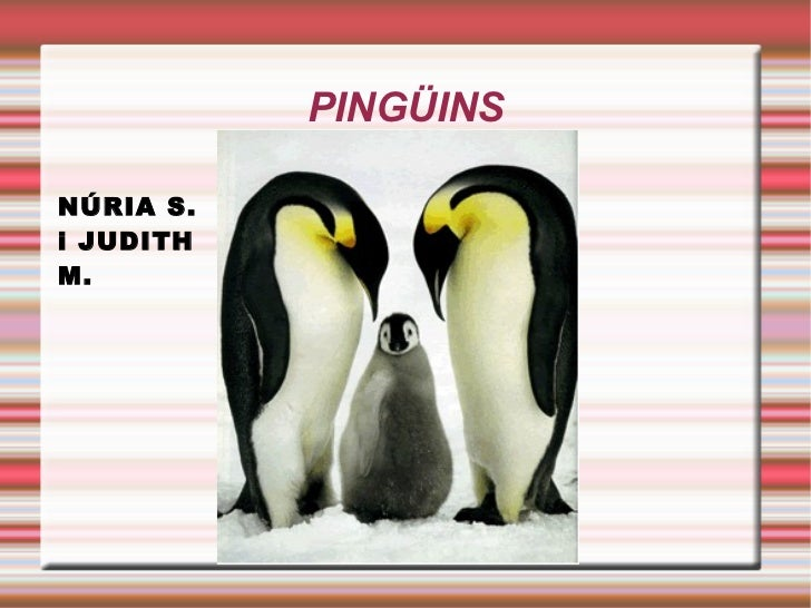 PINGÜINS Title NÚRIA S. i JUDITH M.