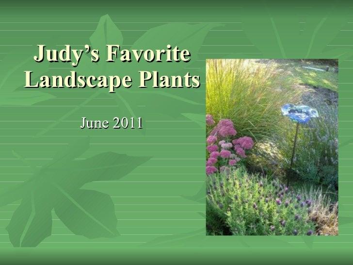 Judy's Favorite Landscape Plants  June 2011
