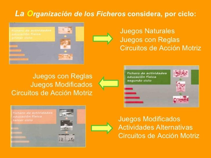 Circuito De Accion Motriz : Juego en educacion motriz