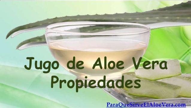Jugo de Aloe Vera   Propiedades         ParaQueSirveElAloeVera.com