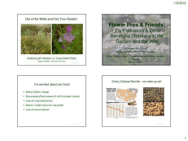 1/6/2013 Out of the Wilds and Into Your Garden                                                                       Flowe...