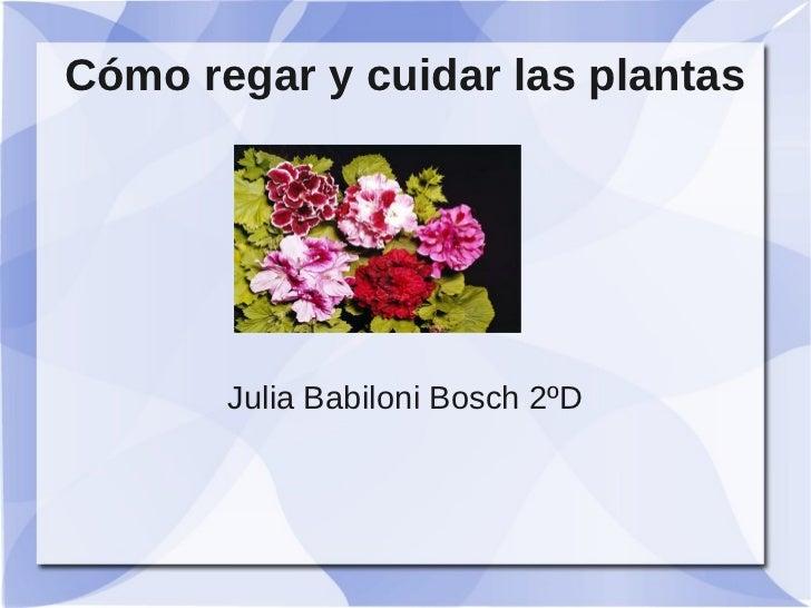 Cómo regar y cuidar las plantas       Julia Babiloni Bosch 2ºD