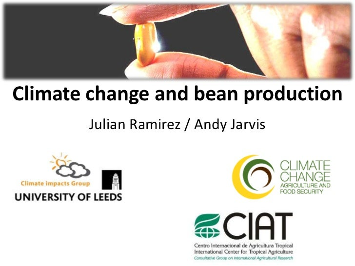 Climate change and bean production       Julian Ramirez / Andy Jarvis                                      (c) Neil Palmer...