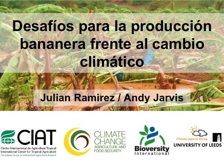Desafíos para la producción bananera frente al cambio climático Julian Ramirez / Andy Jarvis