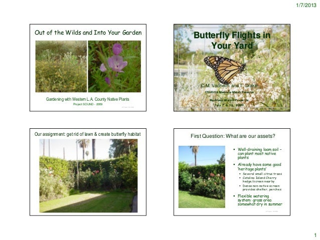 More Butterfly Gardens - notes
