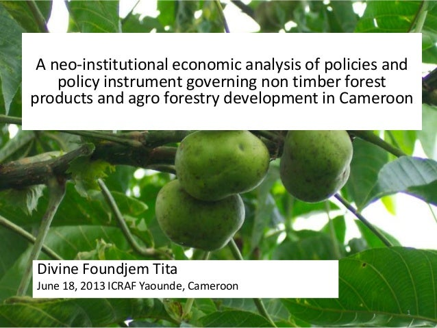 A neo-institutional economic analysis of policies and policy instrument governing non-timber forest products and agro forestry development in Cameroon