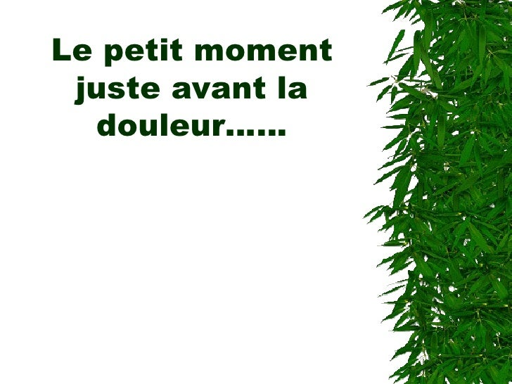 Le petit moment juste avant la douleur……