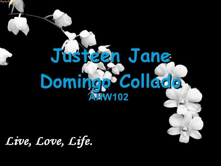 Justeen Jane Domingo Collado AHW102