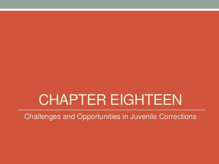 Juvenile corrections pp week 16