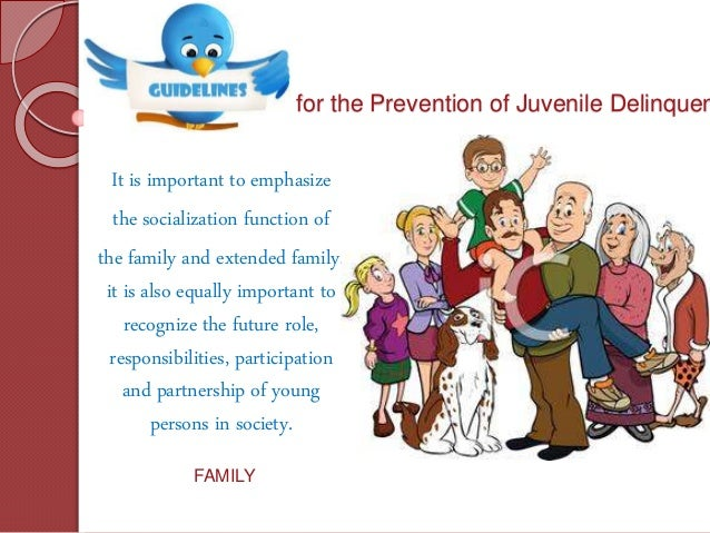 delinquency prevention The difference between juvenile delinquency prevention and control is simple prevention is pre-crime.