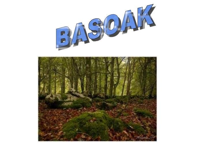 BASOAK