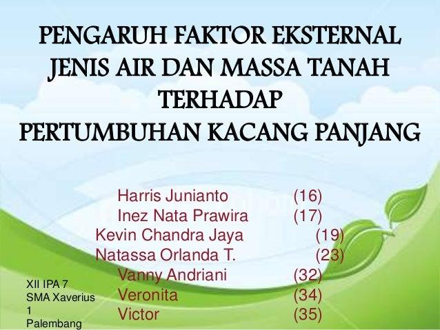 PENGARUH FAKTOR EKSTERNAL   JENIS AIR DAN MASSA TANAH             TERHADAPPERTUMBUHAN KACANG PANJANG               Harris ...