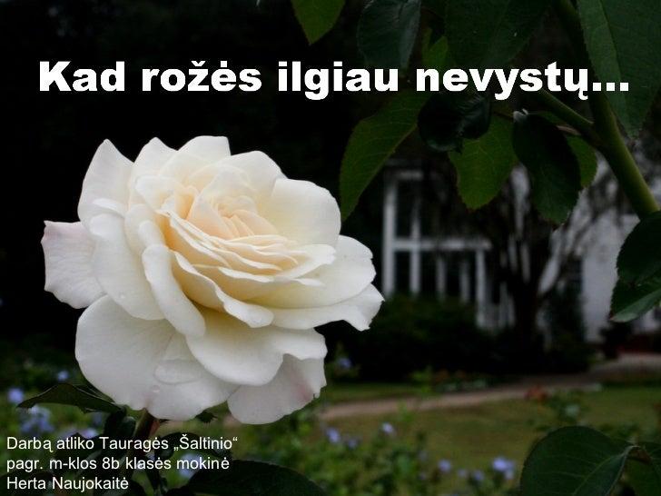 Kad rozes ilgiau nevystu