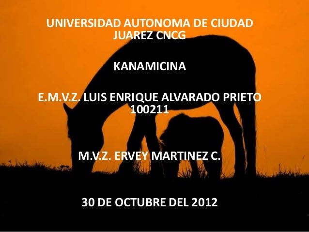 UNIVERSIDAD AUTONOMA DE CIUDAD           JUAREZ CNCG            KANAMICINAE.M.V.Z. LUIS ENRIQUE ALVARADO PRIETO           ...