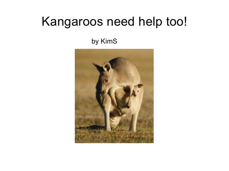 Kangaroos need help, too