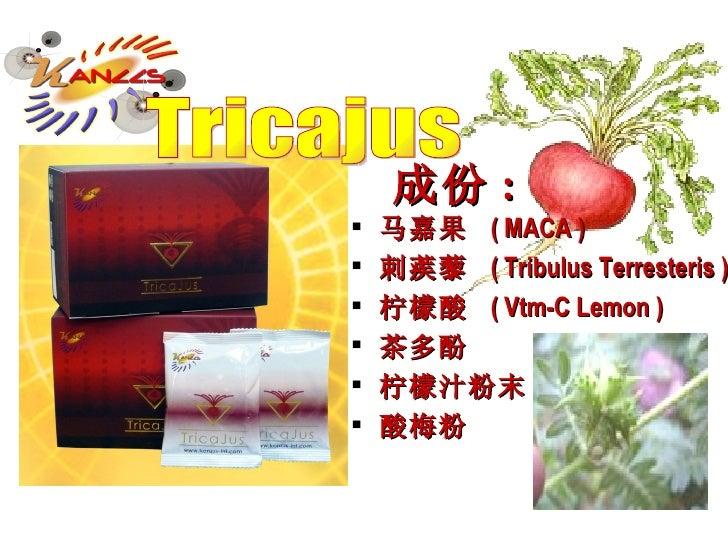 成份 : <ul><li>马嘉果  ( MACA ) </li></ul><ul><li>刺蒺藜  ( Tribulus Terresteris ) </li></ul><ul><li>柠檬酸  ( Vtm-C Lemon ) </li></u...