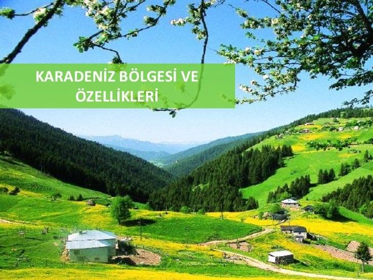 Karadeniz Bölgesi ve Özellikleri