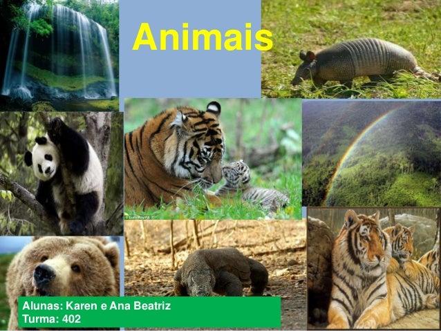 Animais  Alunas: Karen e Ana Beatriz  Turma: 402