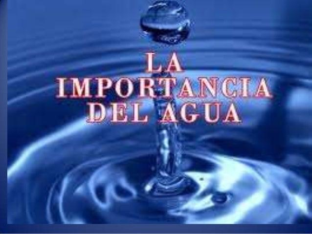 la Importancia Del Agua Para la Vida la Importancia Del Agua