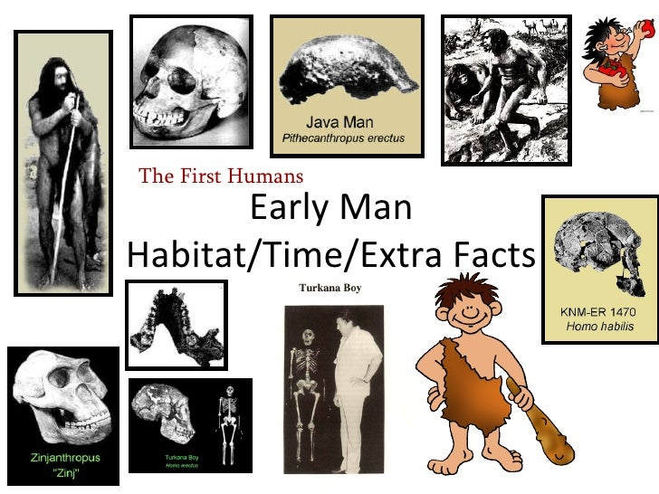 Early Man Food Early Man Habitat/time/extra