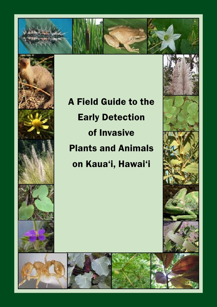 ''    A Field Guide to the   Early Detection      of Invasive Plants and Animals on Kaua'i, Hawai'i