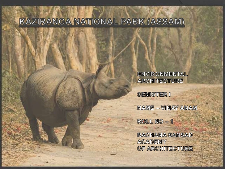 Kaziranga national park ppt (vinay anam)