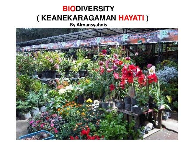 ( KEANEKARAGAMAN HAYATI ) BIODIVERSITY By Almansyahnis