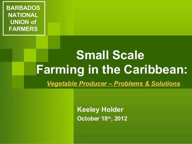 BARBADOSNATIONAL UNION of FARMERS             Small Scale       Farming in the Caribbean:            Vegetable Producer – ...