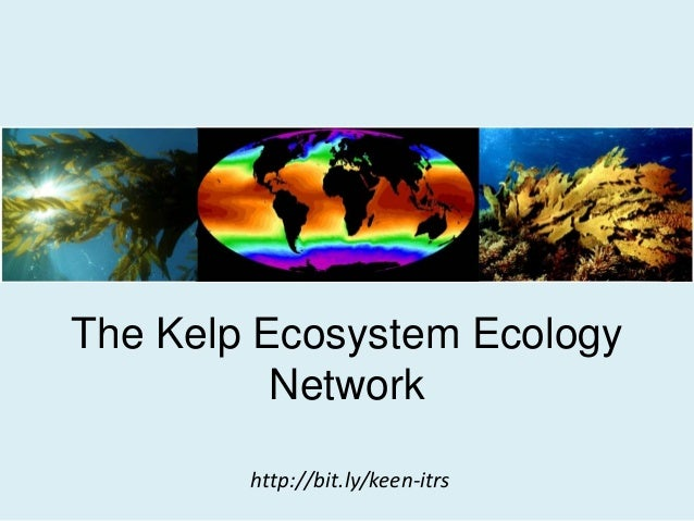 Kelp Ecosystem Ecology Network Organizational Session at ITRS 2014
