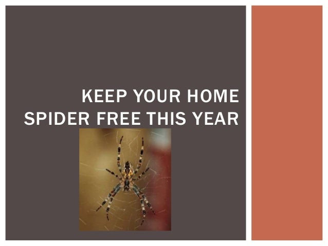KEEP YOUR HOME SPIDER FREE THIS YEAR