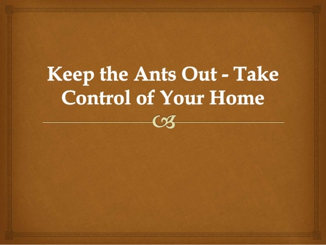 Pest control is always a concern to a homeowner. There are many little pesky critters that can make their way into home en...