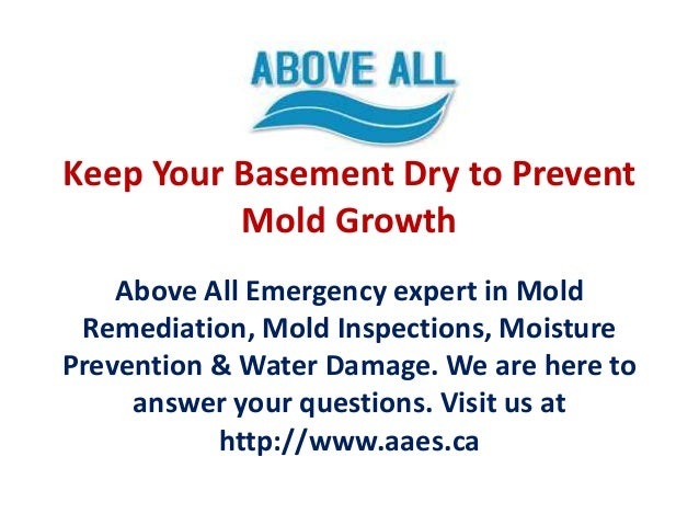 keep your basement dry to prevent mold growth