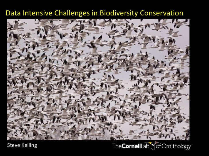 Keynote Speaker 1 - Data Intensive Challenges in Biodiversity Conservation: a multi-scale approach to estimating species distributions - Steve Kelling