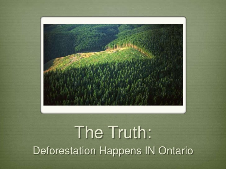 The Truth: Deforestation Happens IN Ontario
