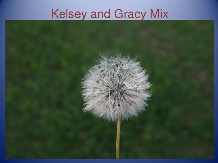 Kelsey and Gracy Mix<br />