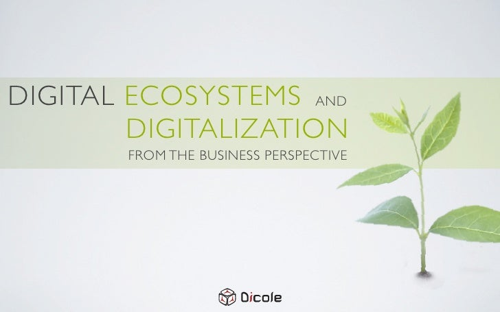 Digital ecosystems and digitalization from the business perspective