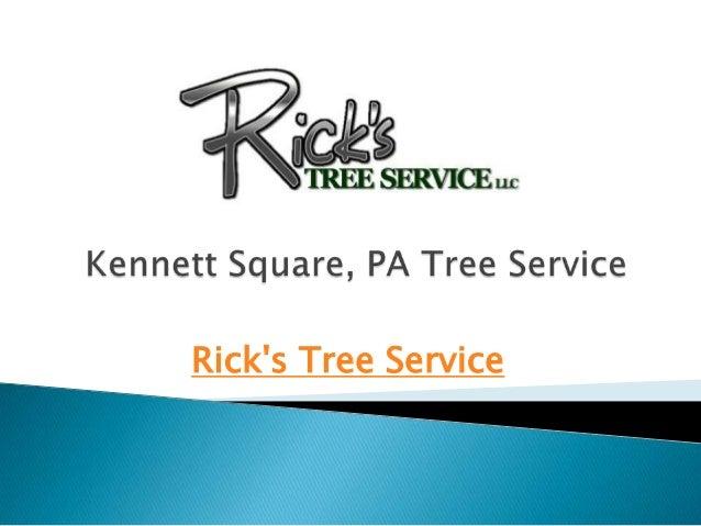 Kennett Square, PA Tree Service