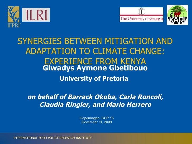 Glwadys Aymone Gbetibouo University of Pretoria   on behalf of Barrack Okoba, Carla Roncoli, Claudia Ringler, and Mario He...