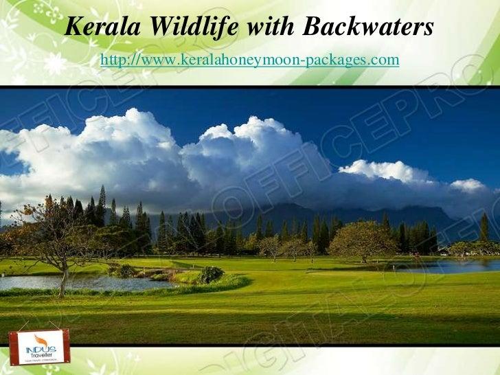 Kerala Wildlife with Backwaters   http://www.keralahoneymoon-packages.com