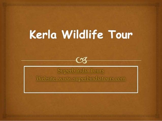 Kerla wildlife tour