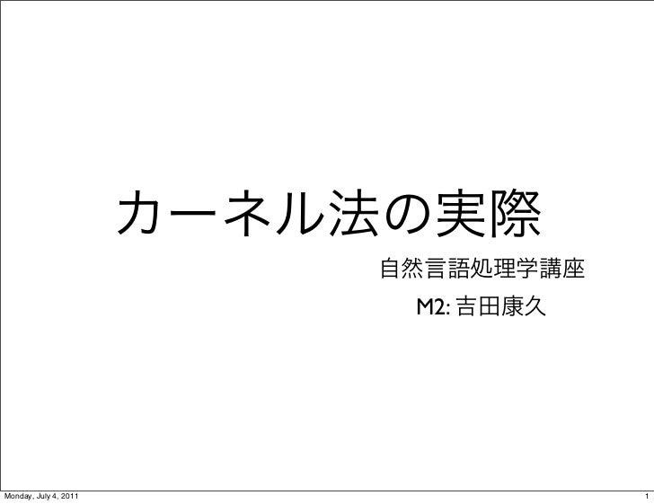 Kernel20110619