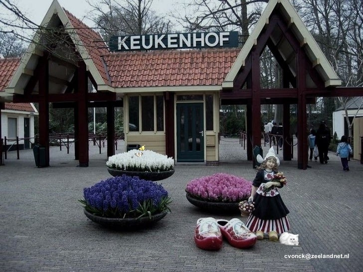 cvonck@zeelandnet.nl