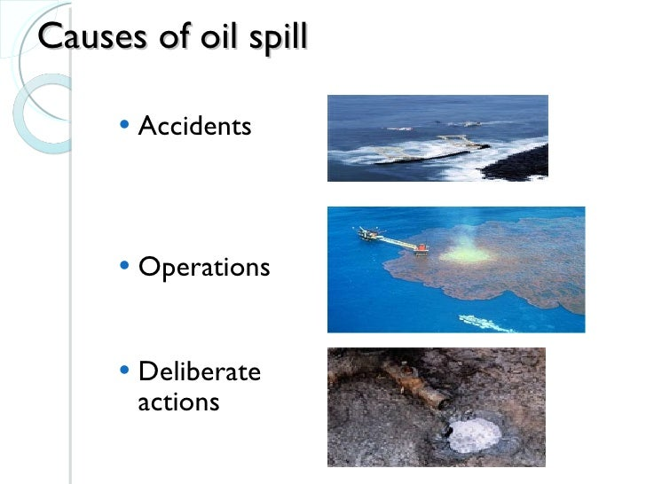 The Hazardous Impact Of Oil Spills On The Environment  Essay  The Hazardous Impact Of Oil Spills On The Environment Essay On English Subject also Persuasive Essays For High School  Someone Write My Lab Report