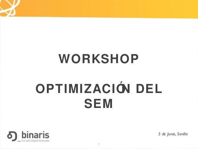 1 WORKSHOP OPTIMIZACIÓN DEL SEM 5 de Junio, Sevilla 1