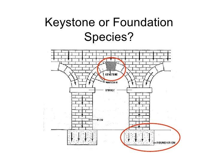 Keystone or Foundation       Species?