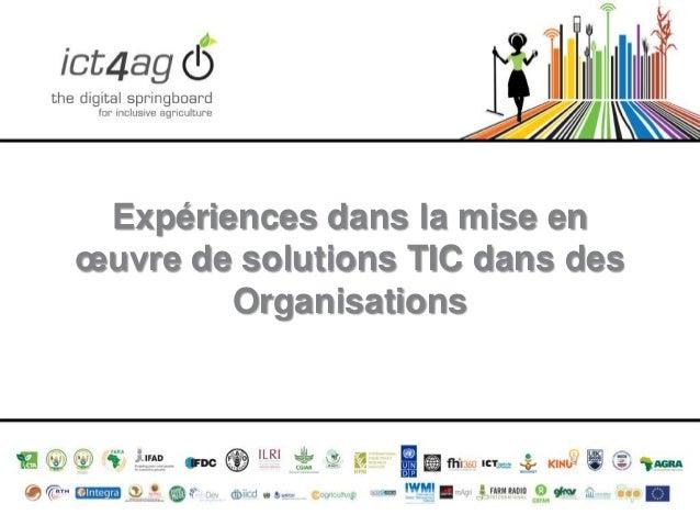 Expériences dans la mise en œuvre de solutions TIC dans des Organisations